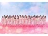 NGT48 スペシャル